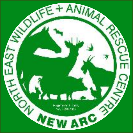 The New Arc - Northeast Wildlife & Animal Rescue Centre